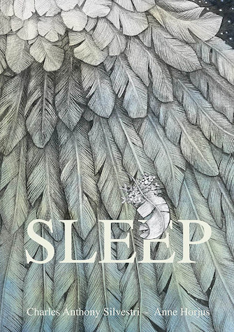 Product Cover for Sleep