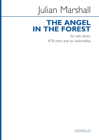 Product Cover for The Angel in the Forest
