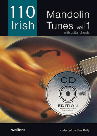 Product Cover for 110 Irish Mandolin Tunes