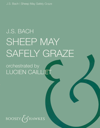 Product Cover for Sheep May Safely Graze