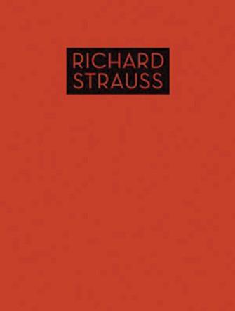 Product Cover for Lieder mit Klavierbegleitung Op. 10 Bis Op. 29